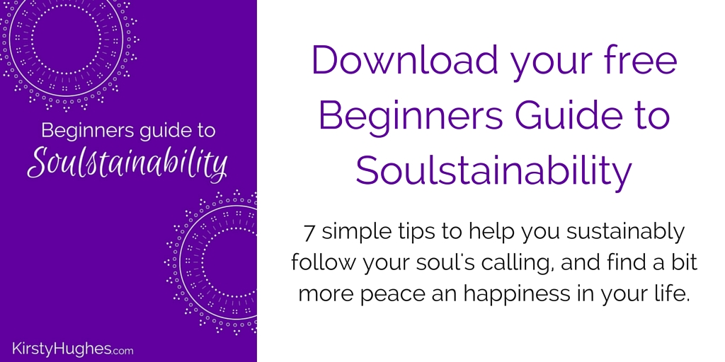 Download your Beginners Guide to Soulstainability